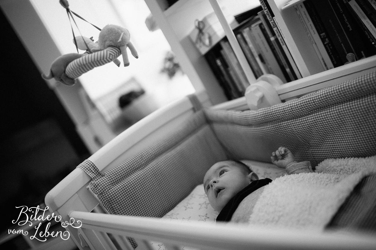 Homestory-Muenchen-Babyfotografie-2016-03-IU8A1832