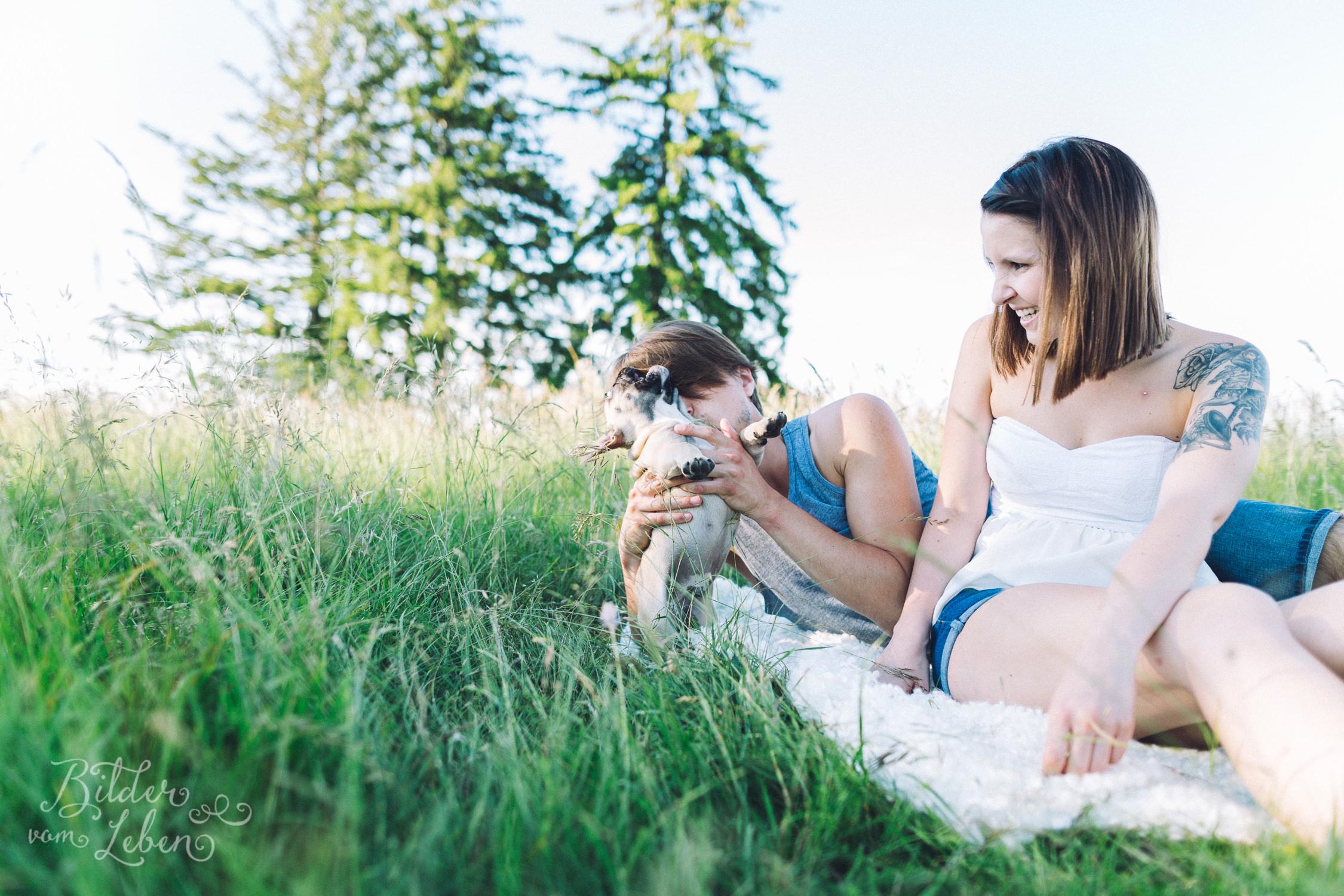 Franzoesische-Bulldogge-Portraits-BildervomLeben-2016-7436