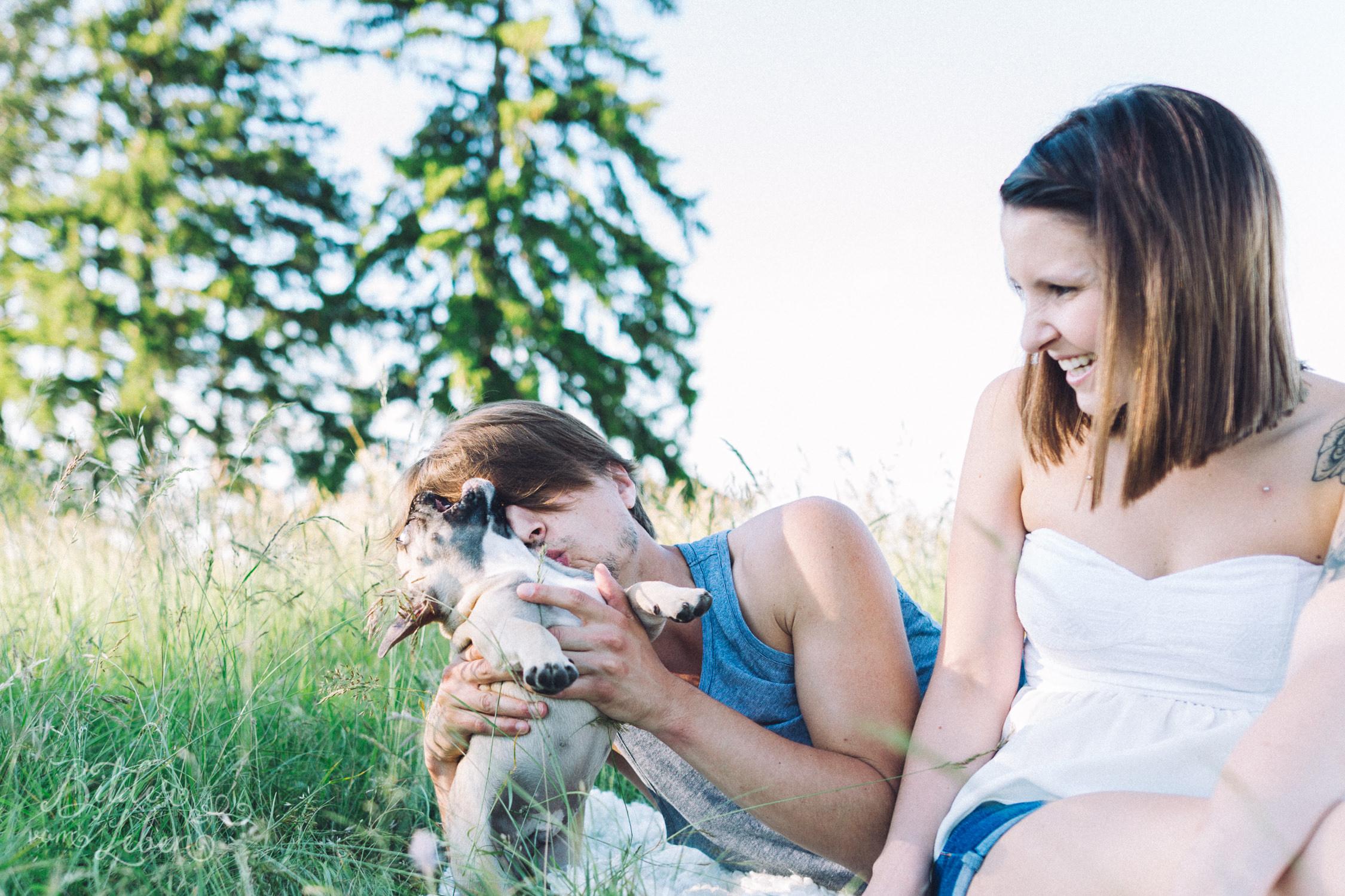 Franzoesische-Bulldogge-Portraits-BildervomLeben-2016-7438