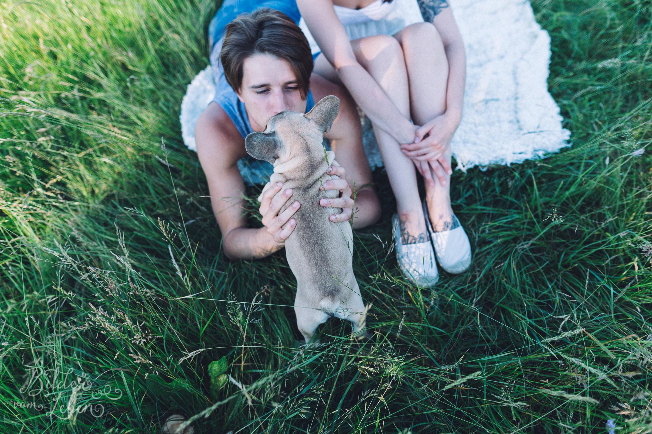 Franzoesische-Bulldogge-Portraits-BildervomLeben-2016-7528