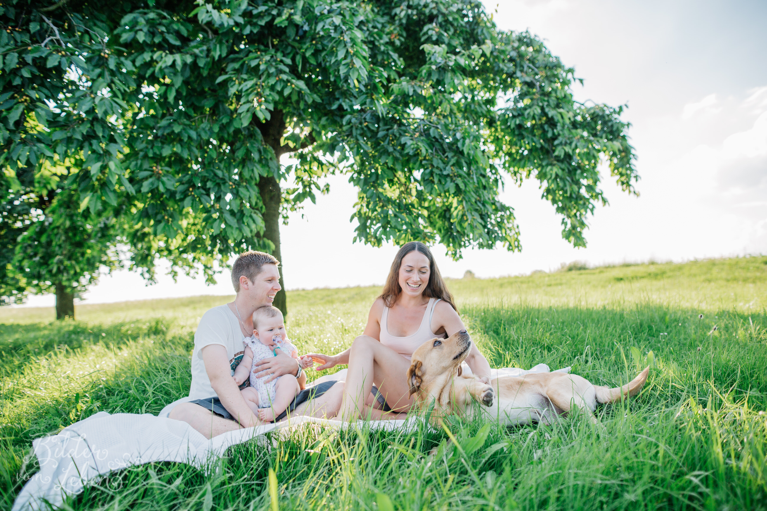 Greta-Labrador-Kinder-Portraits-BildervomLeben-2016-8024