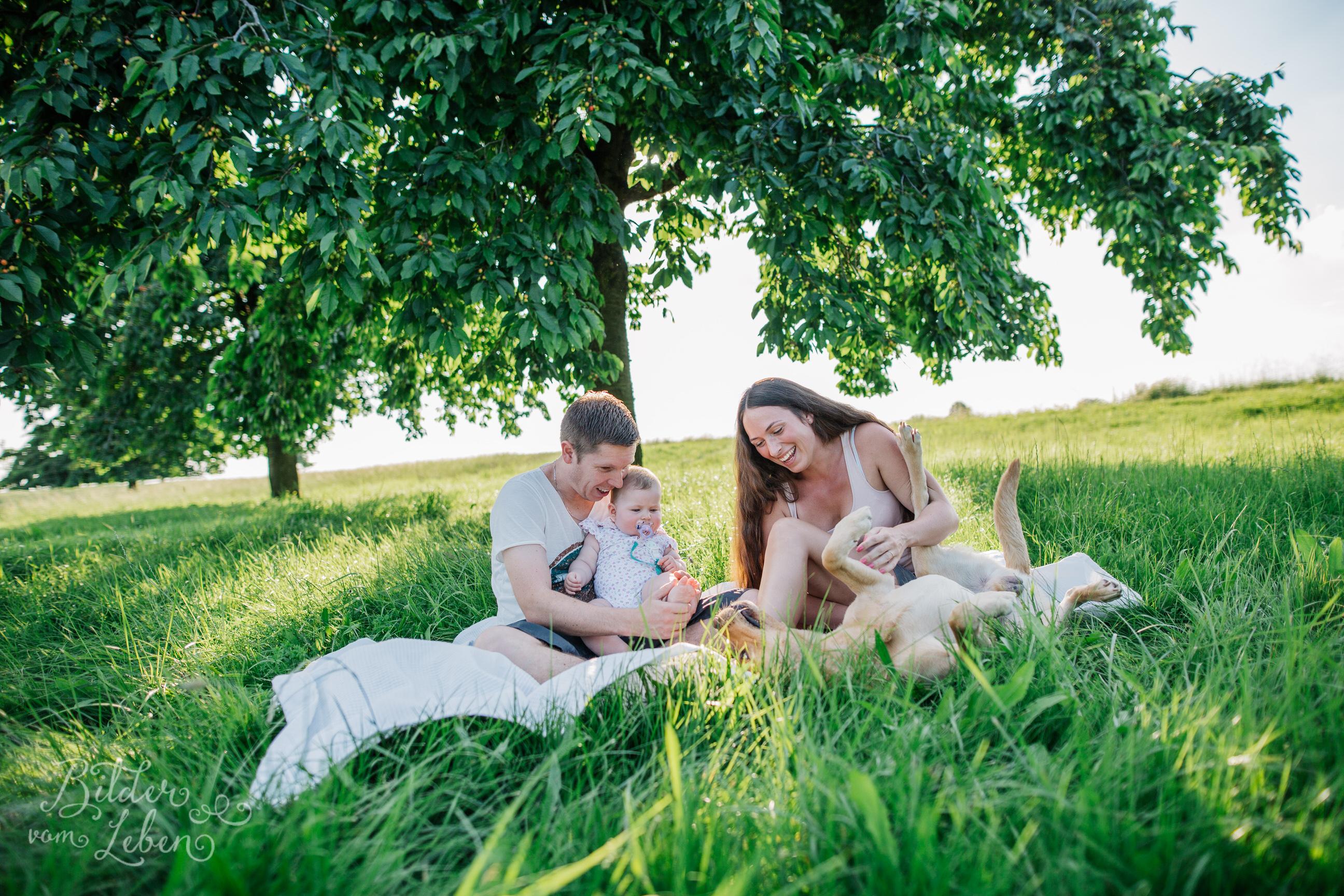 Greta-Labrador-Kinder-Portraits-BildervomLeben-2016-8028