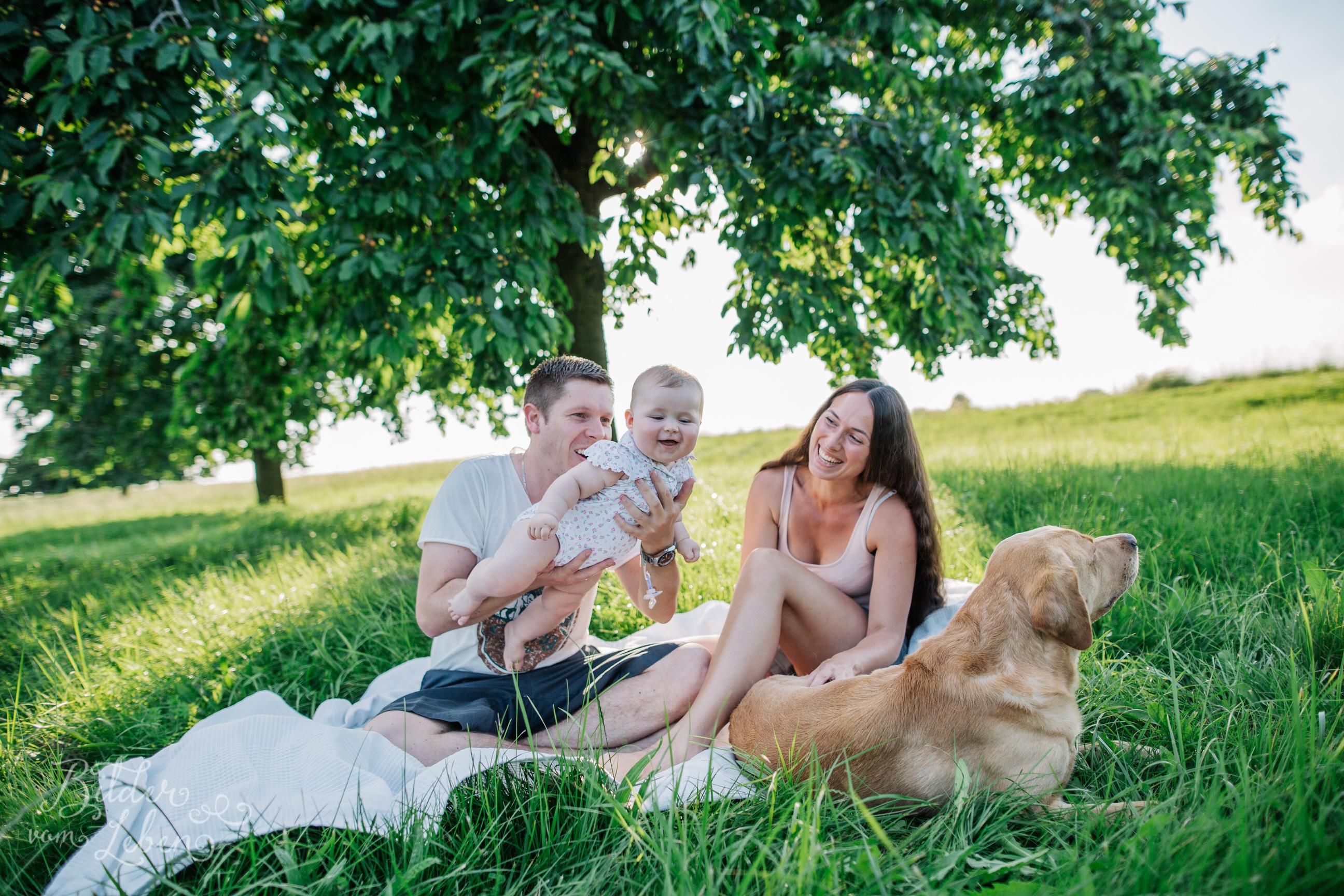 Greta-Labrador-Kinder-Portraits-BildervomLeben-2016-8038