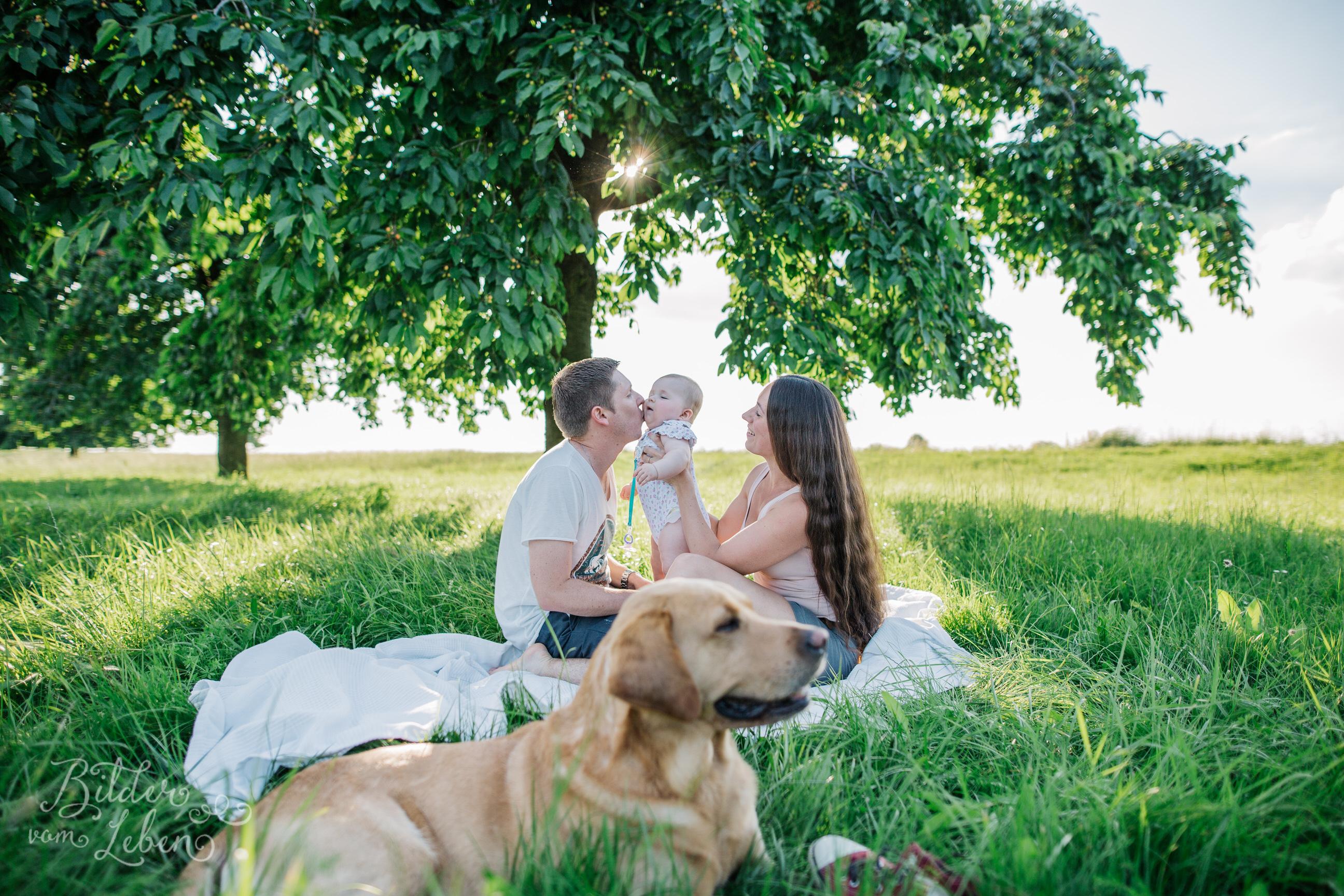 Greta-Labrador-Kinder-Portraits-BildervomLeben-2016-8111