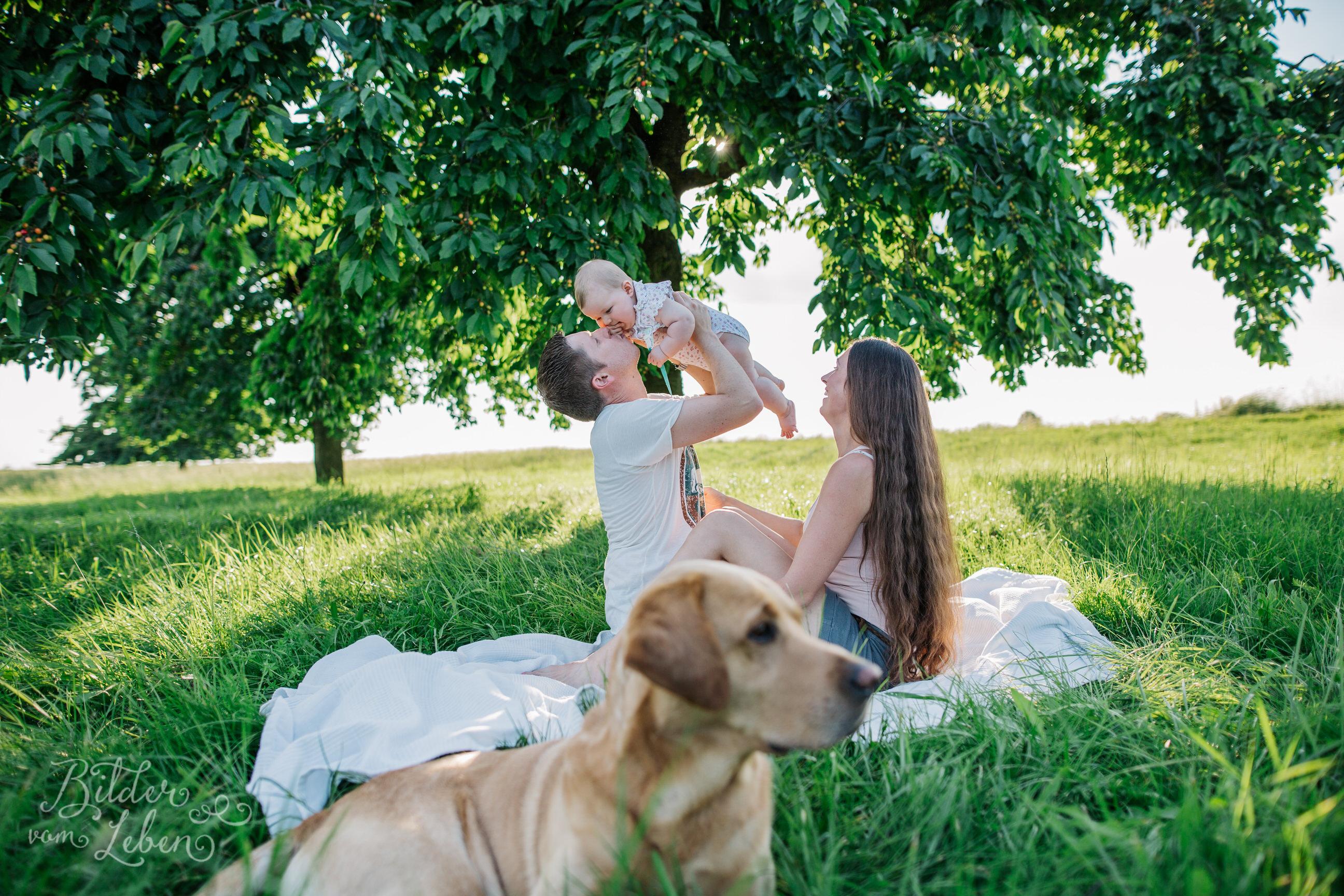 Greta-Labrador-Kinder-Portraits-BildervomLeben-2016-8125