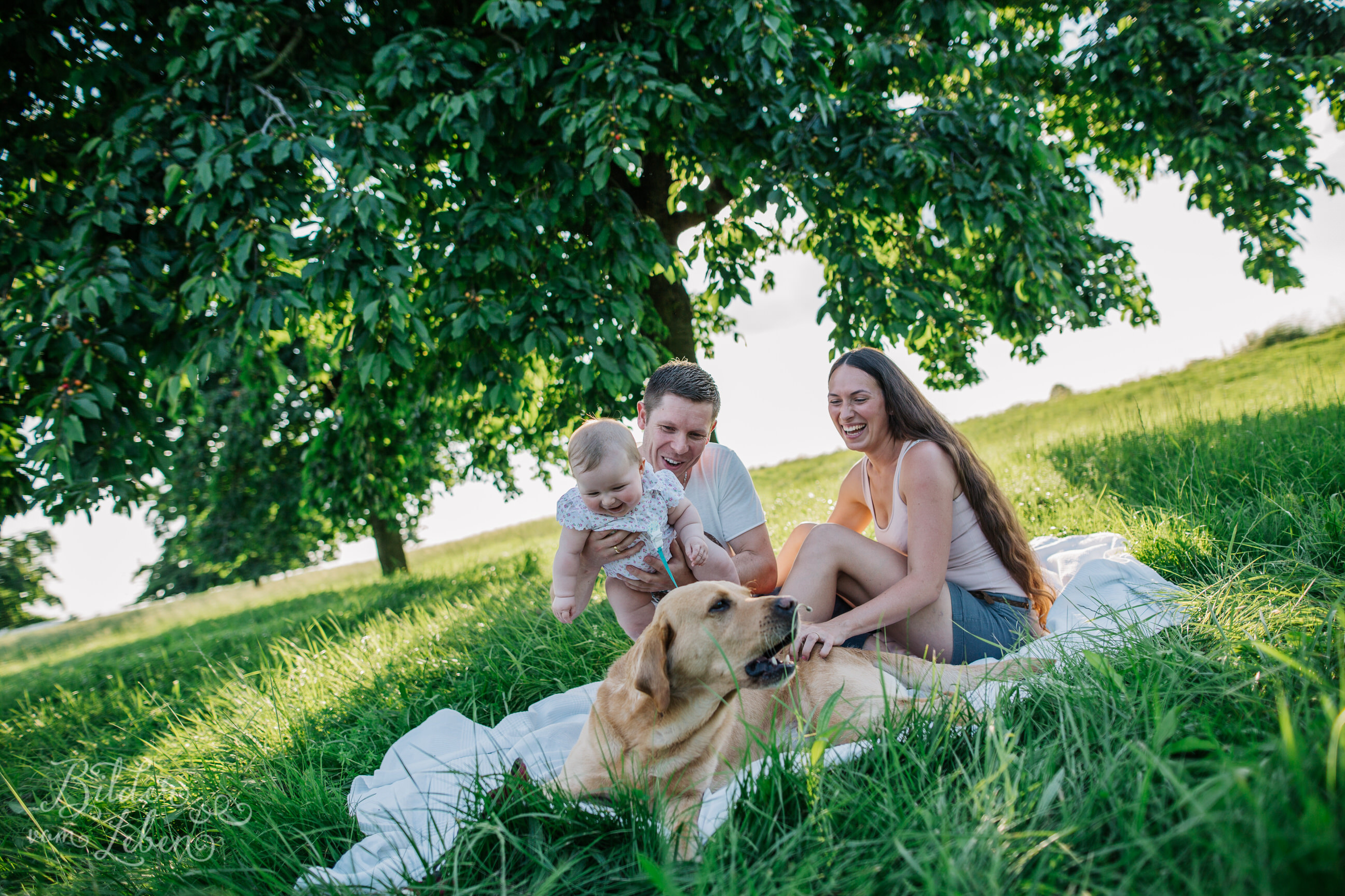 Greta-Labrador-Kinder-Portraits-BildervomLeben-2016-8137