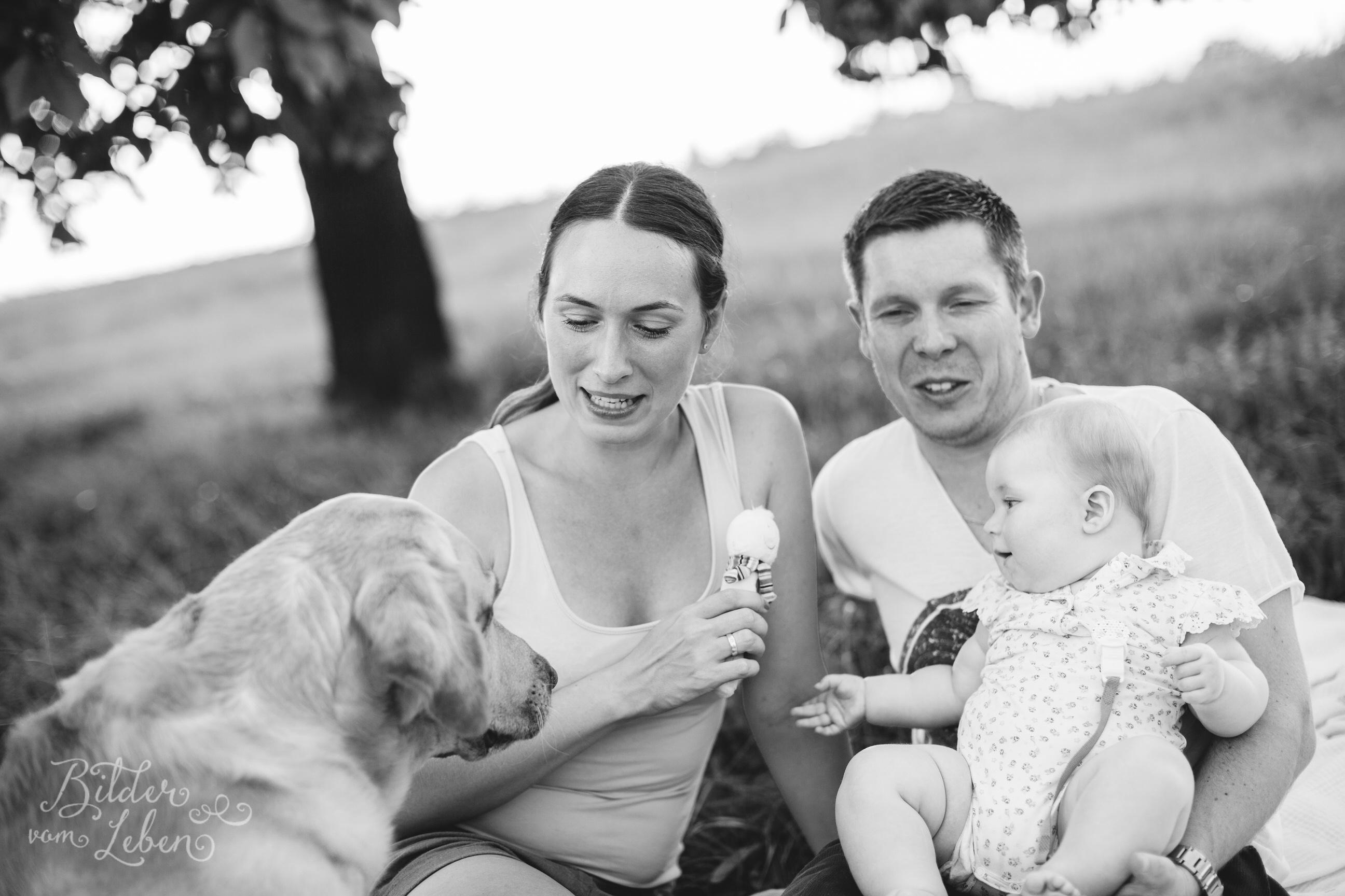 Greta-Labrador-Kinder-Portraits-BildervomLeben-2016-8202