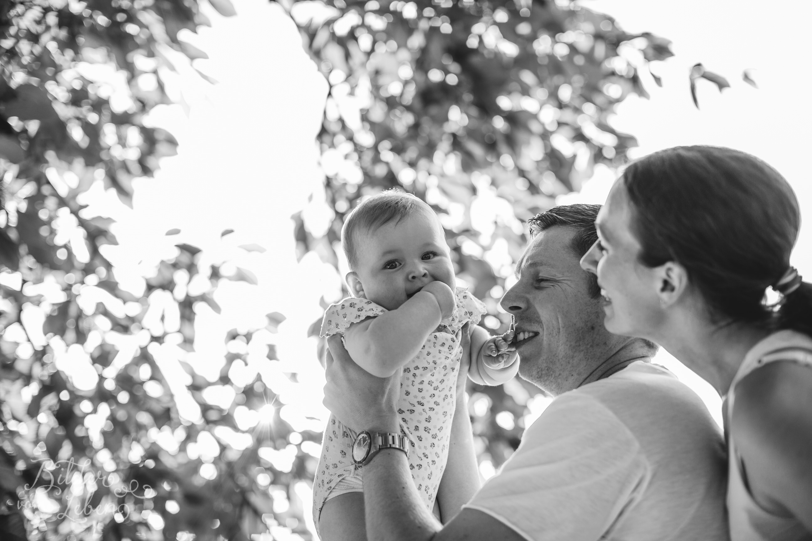 Greta-Labrador-Kinder-Portraits-BildervomLeben-2016-8365