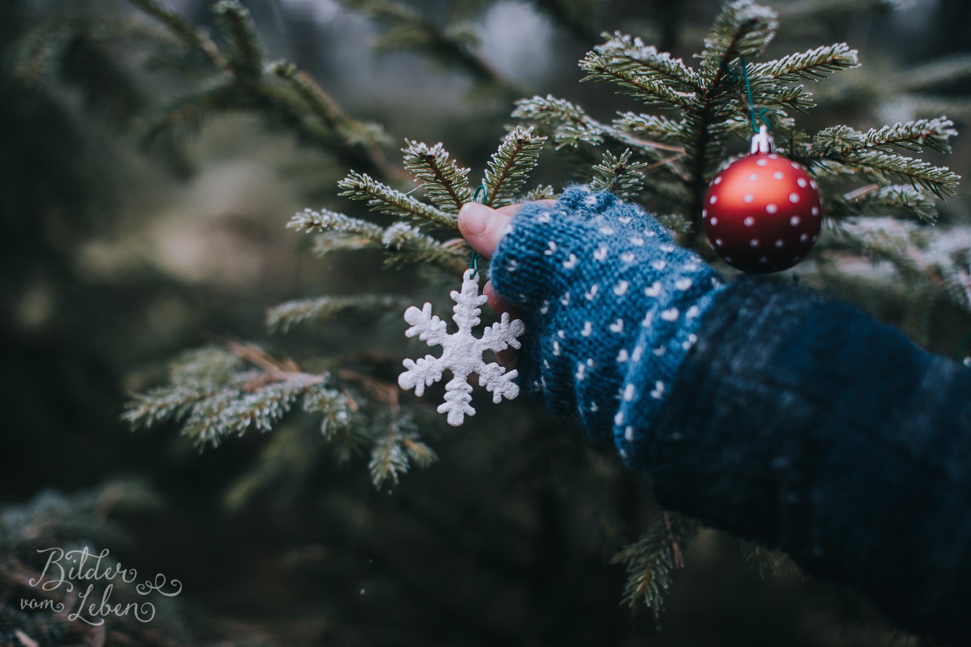 0028weihnachten-bildervomleben-imc39593