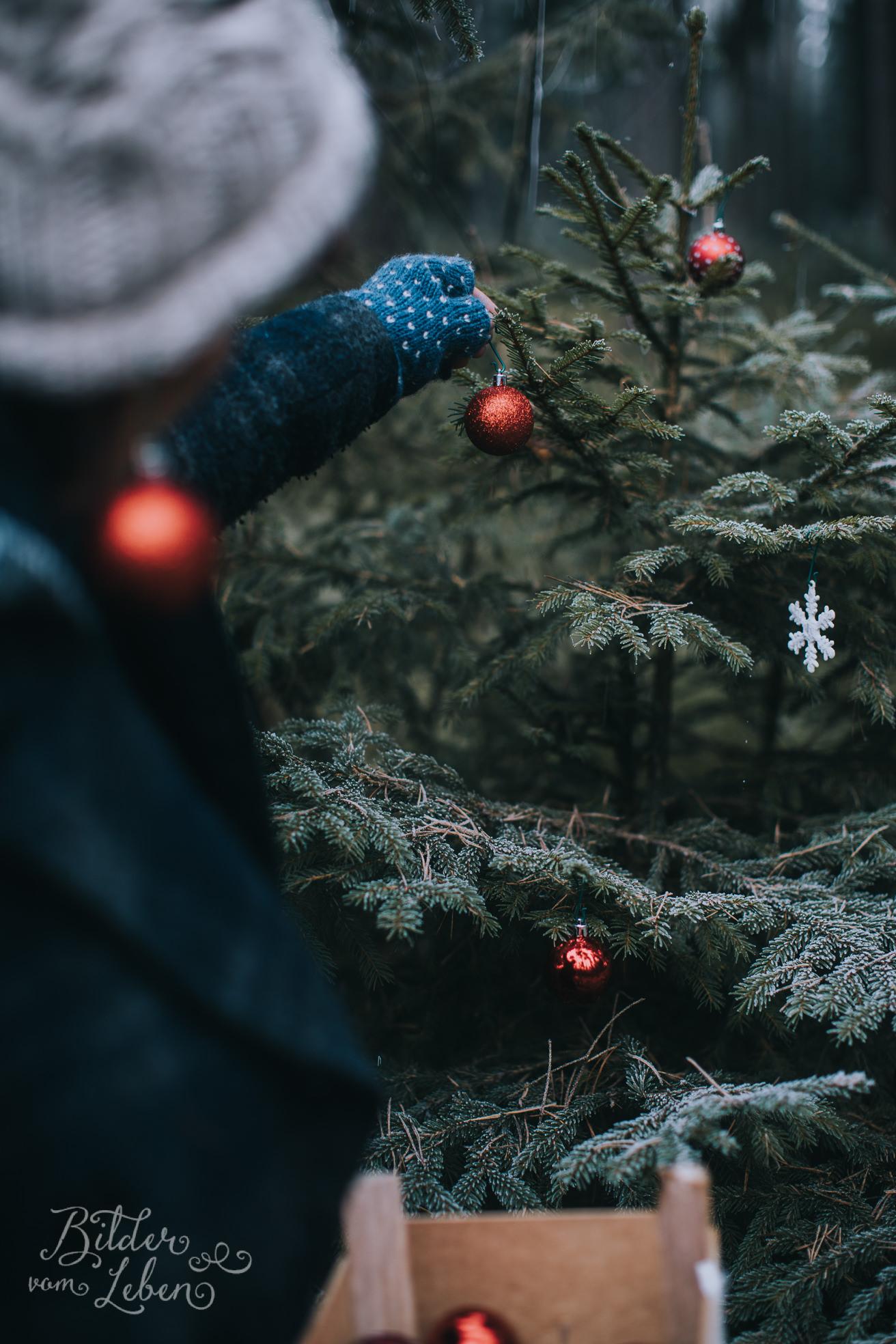 0029weihnachten-bildervomleben-imc39598
