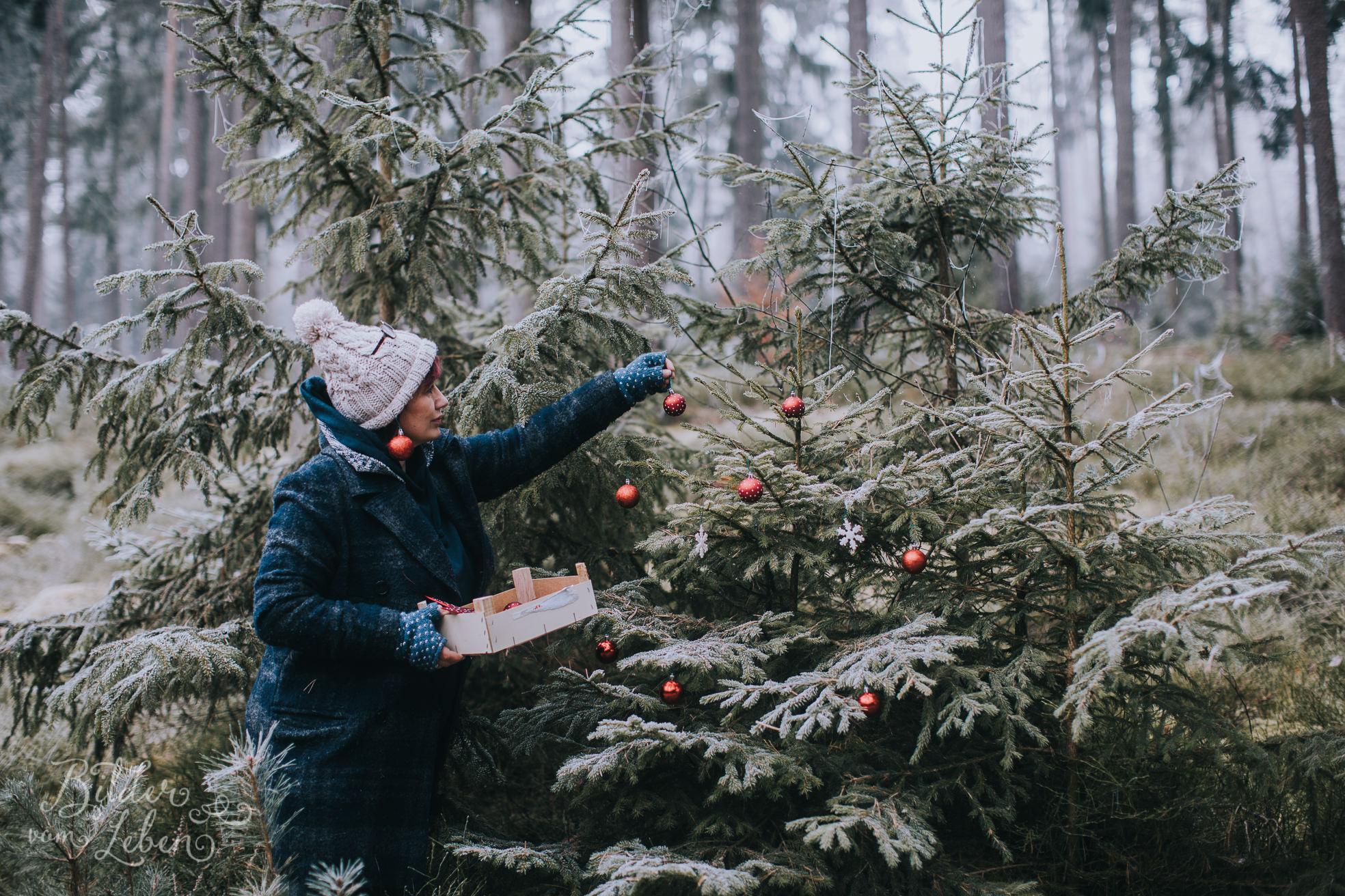 0033weihnachten-bildervomleben-imc39620
