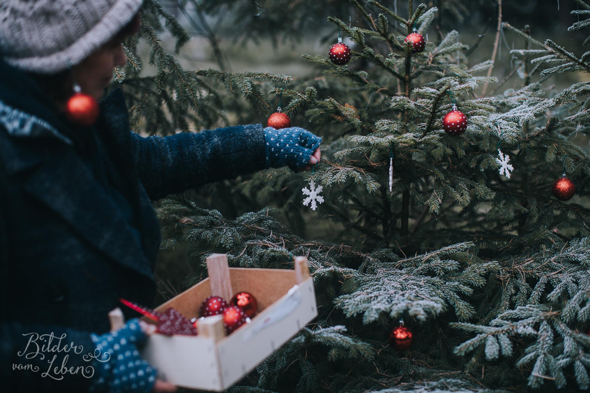0035weihnachten-bildervomleben-imc39629