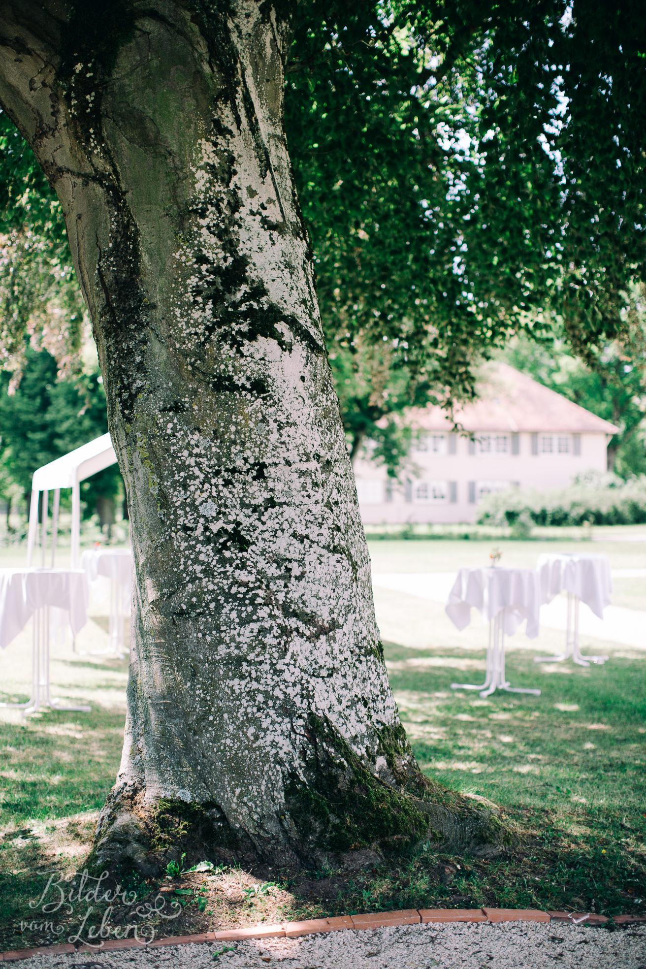 Franzi-Mike-Hochzeitsfotos-Triesdorf-IM2C1407