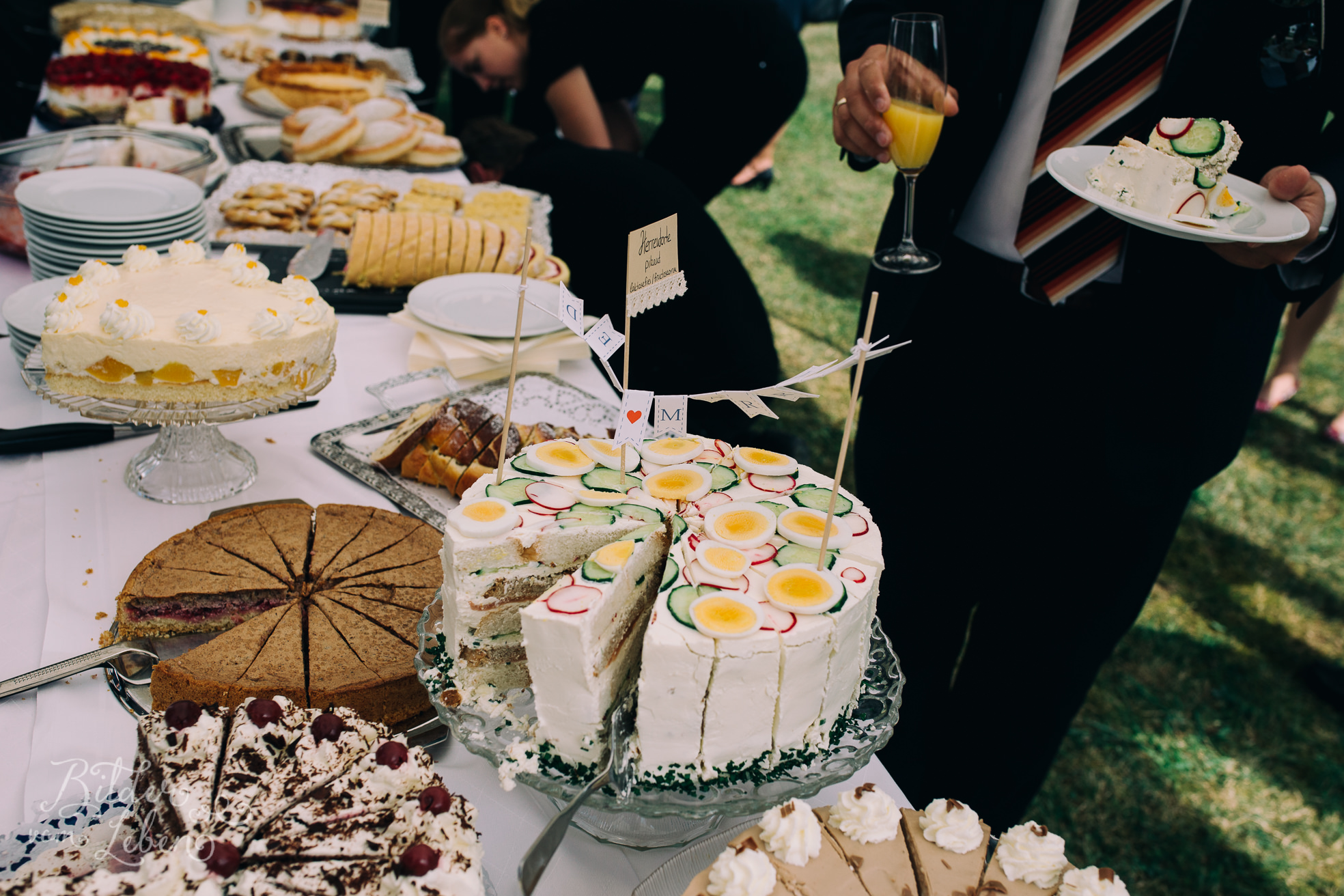 Franzi-Mike-Hochzeitsfotos-Triesdorf-IMG_2055