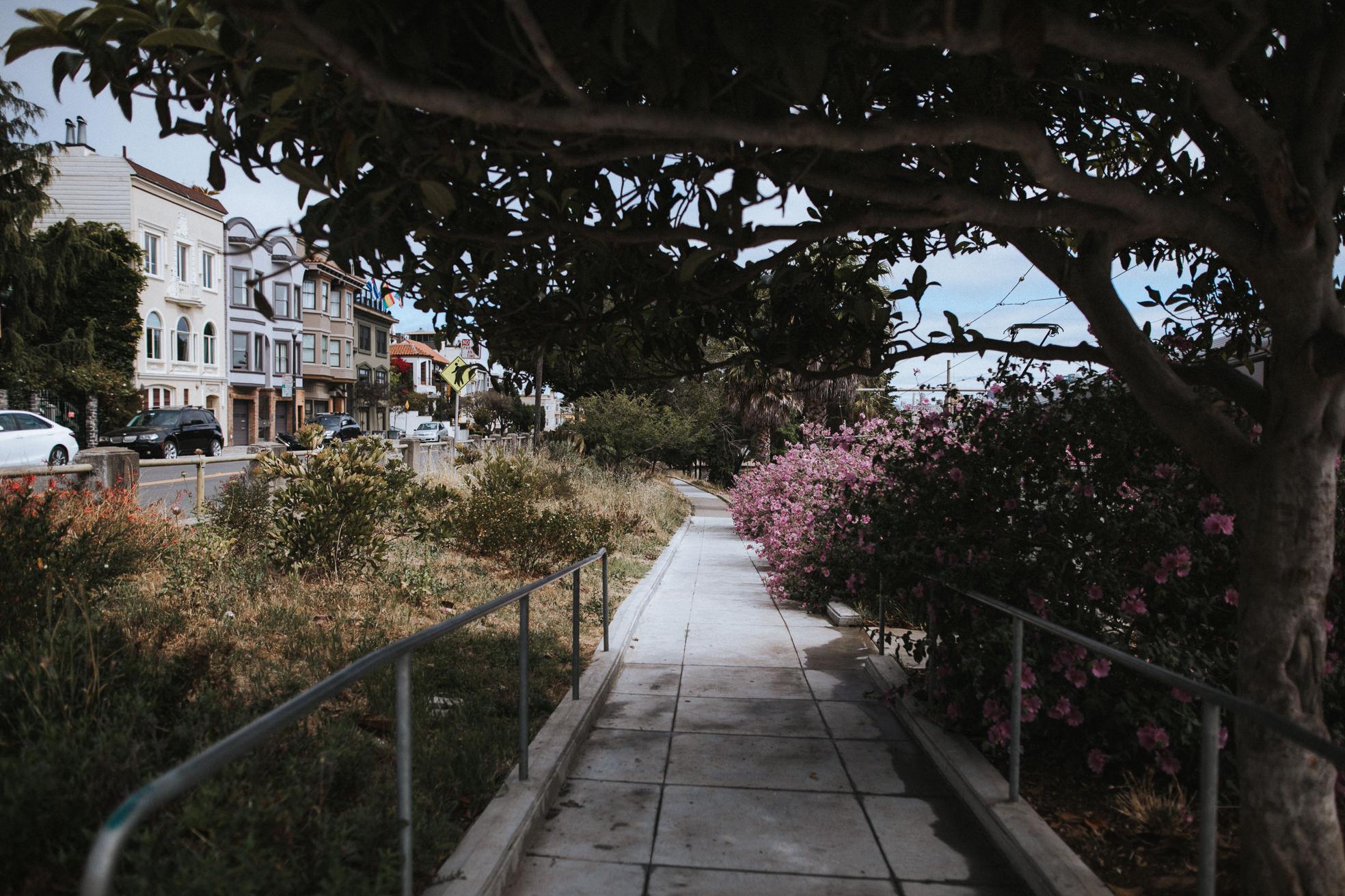San-Francisco-BildervomLeben-4856