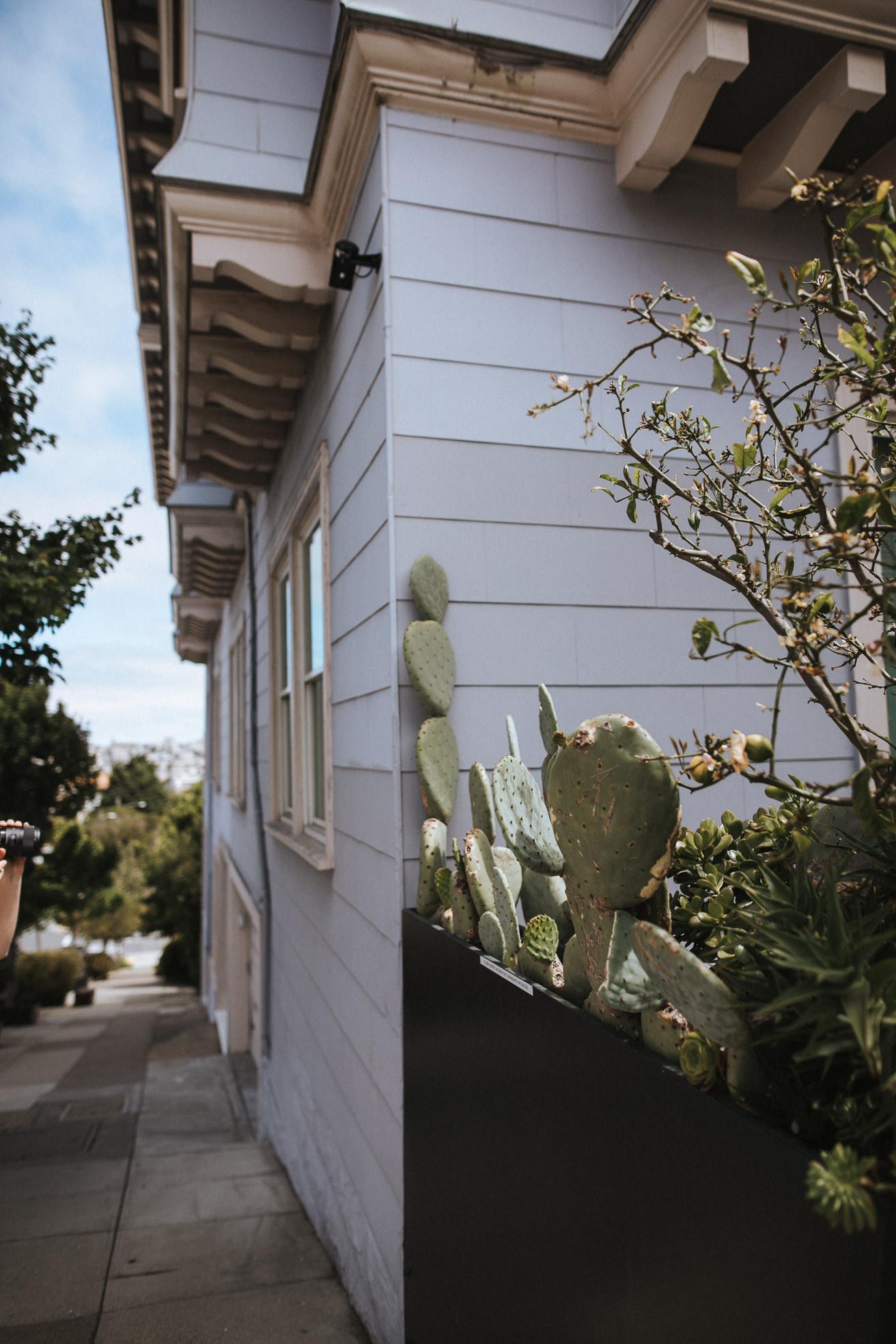 San-Francisco-BildervomLeben-4937