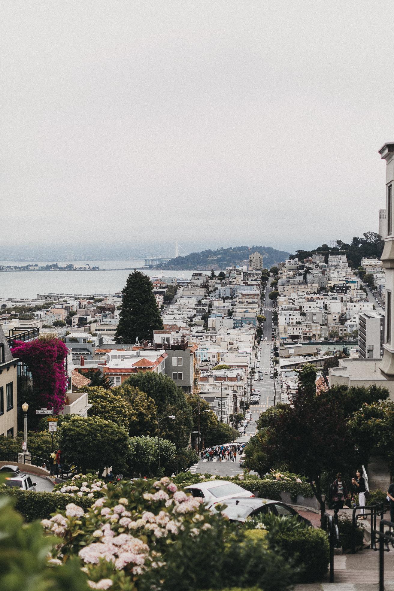 San-Francisco-BildervomLeben-7873