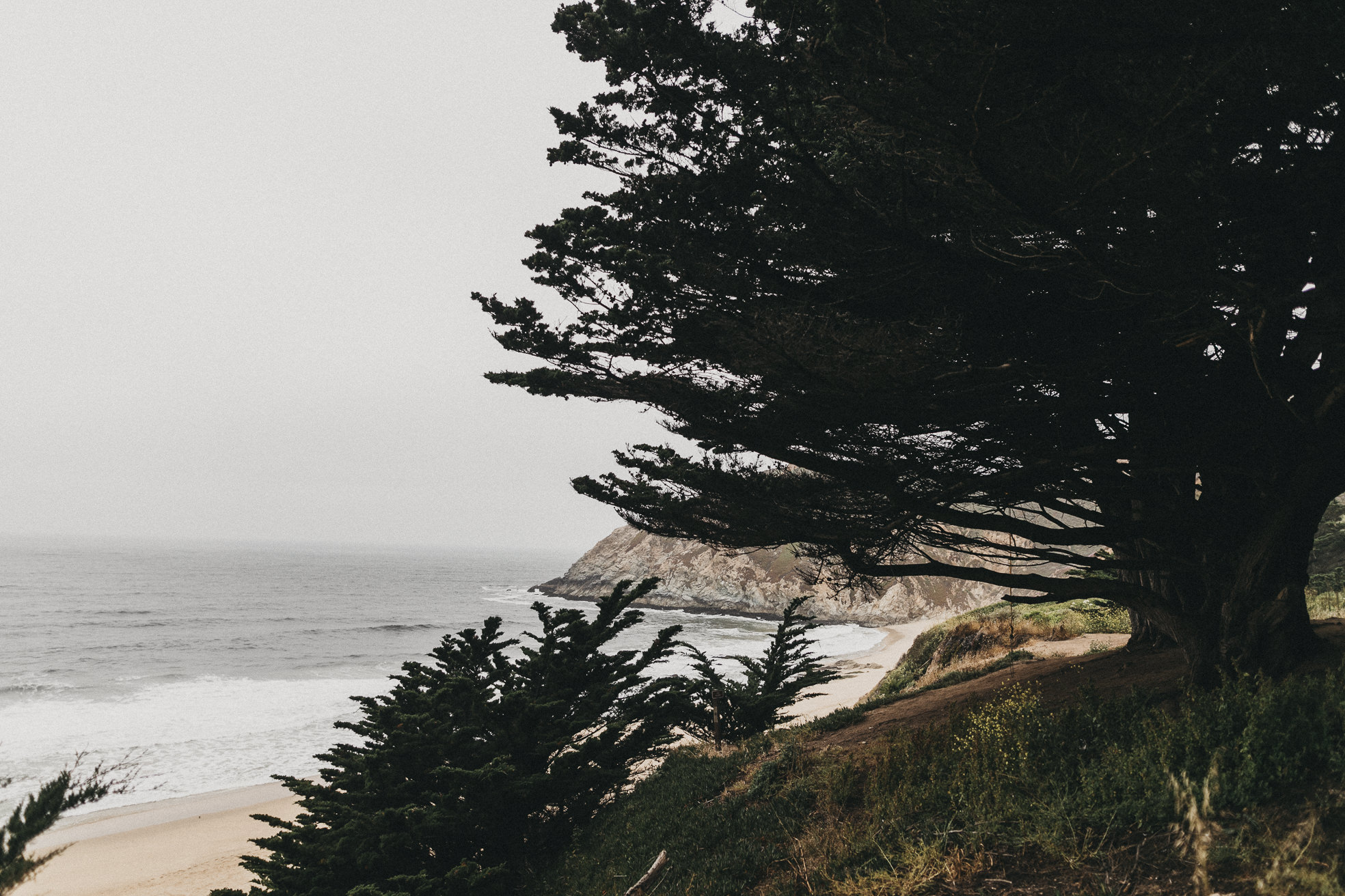 San-Francisco-BildervomLeben-9897