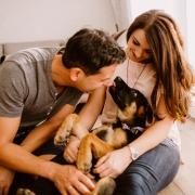 Hundebilder, Welpenbilder, Hundewelpe, Mischlingswelpe, Homestory, Bilder vom Leben.